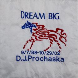 quilt-3-d-j-prochaska