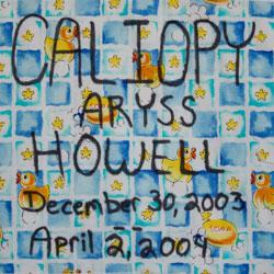 quilt-5-caliopy-aryss-howell